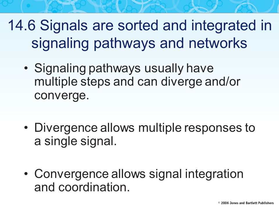 14.6 Signals are sorted and integrated in signaling pathways and networks