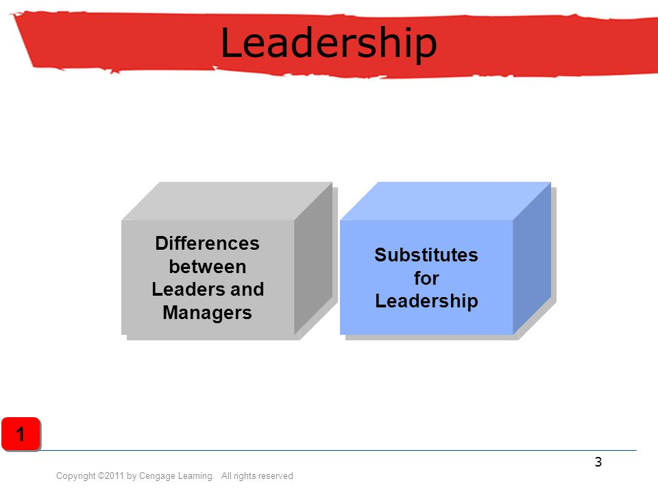 Differences between Leaders and Managers Substitutes for Leadership