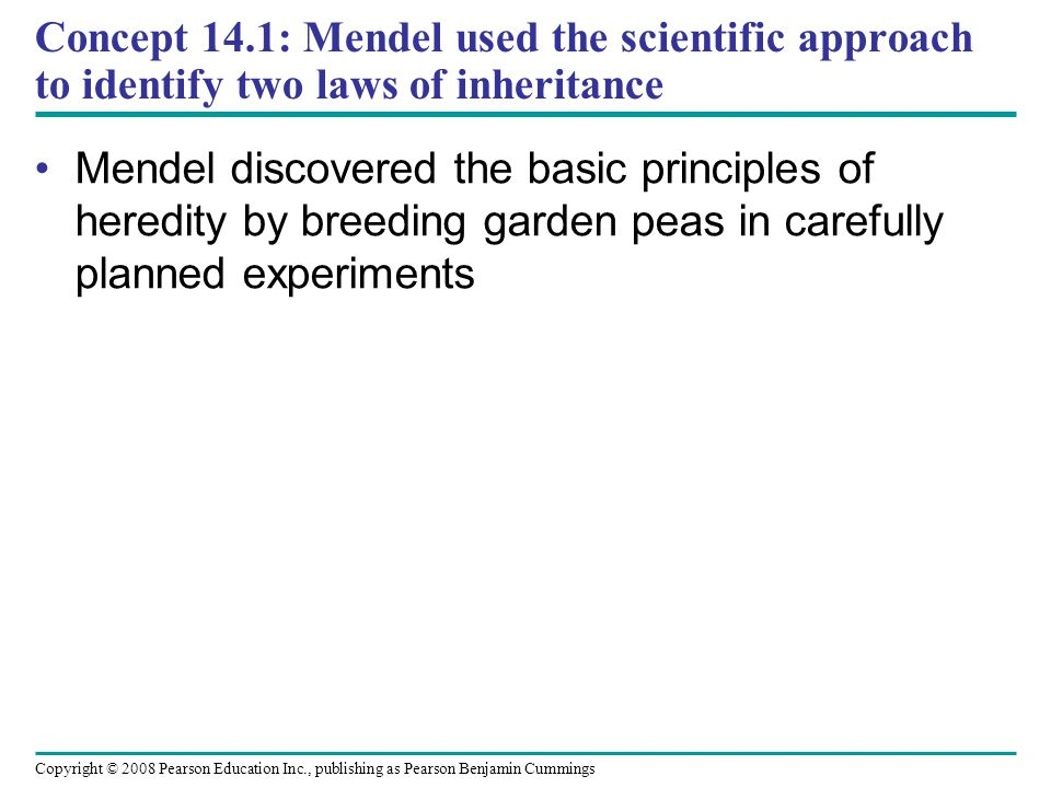 Concept 14.1: Mendel used the scientific approach to identify two laws of inheritance