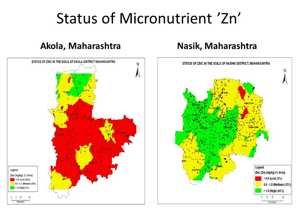 Status of Micronutrient 'Zn'