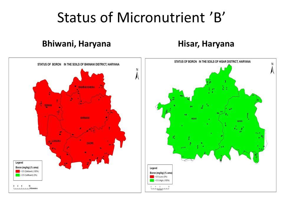 Status of Micronutrient 'B'