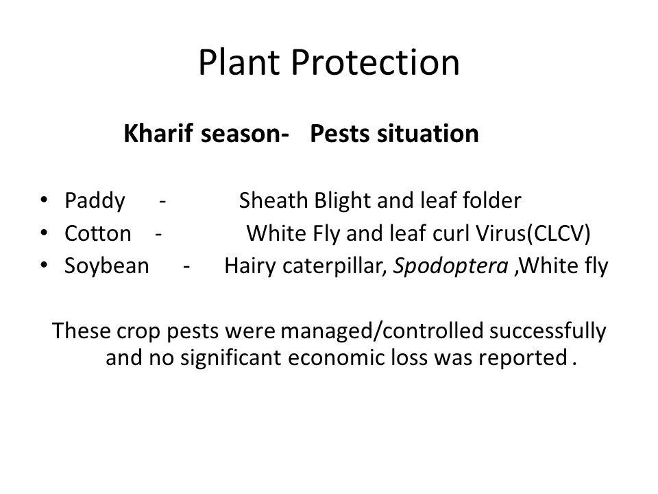 Plant Protection Kharif season- Pests situation