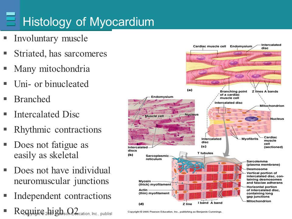 Histology of Myocardium