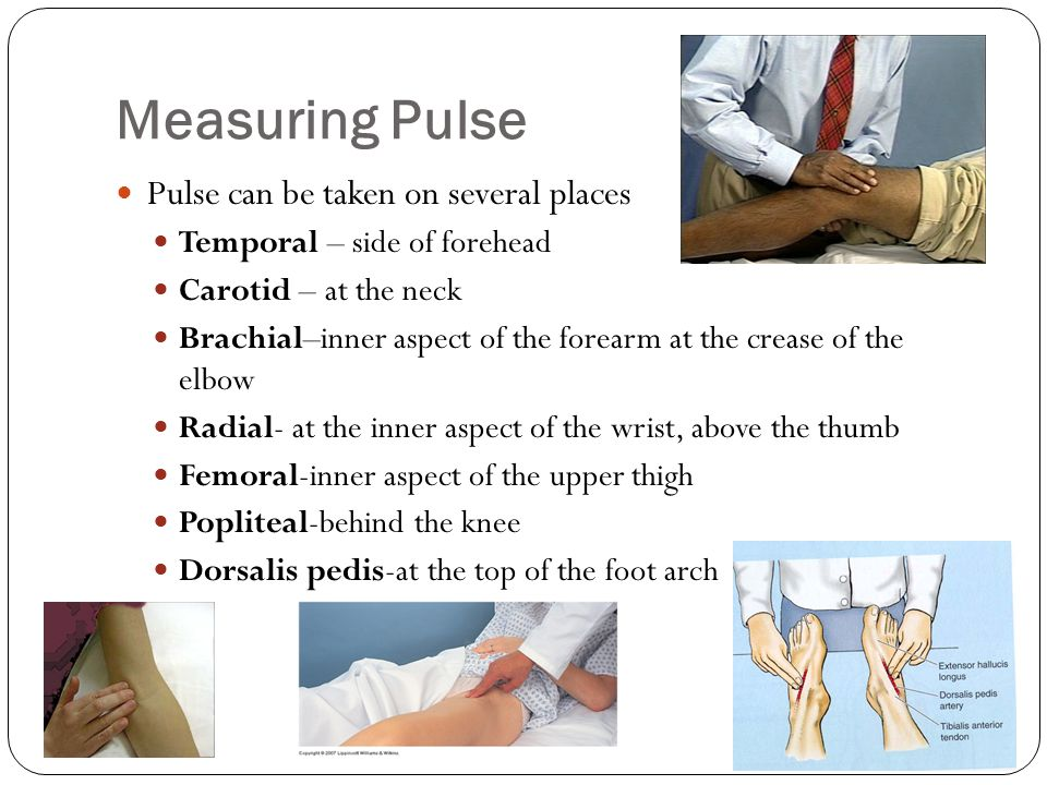 Measuring Pulse Pulse can be taken on several places