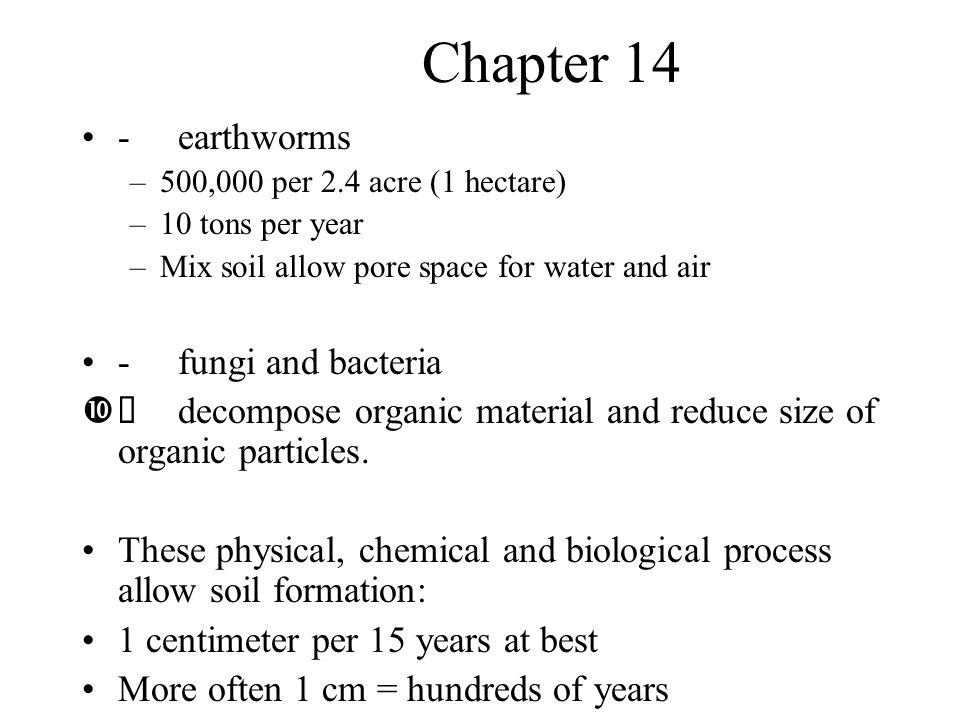 Chapter 14 - earthworms - fungi and bacteria