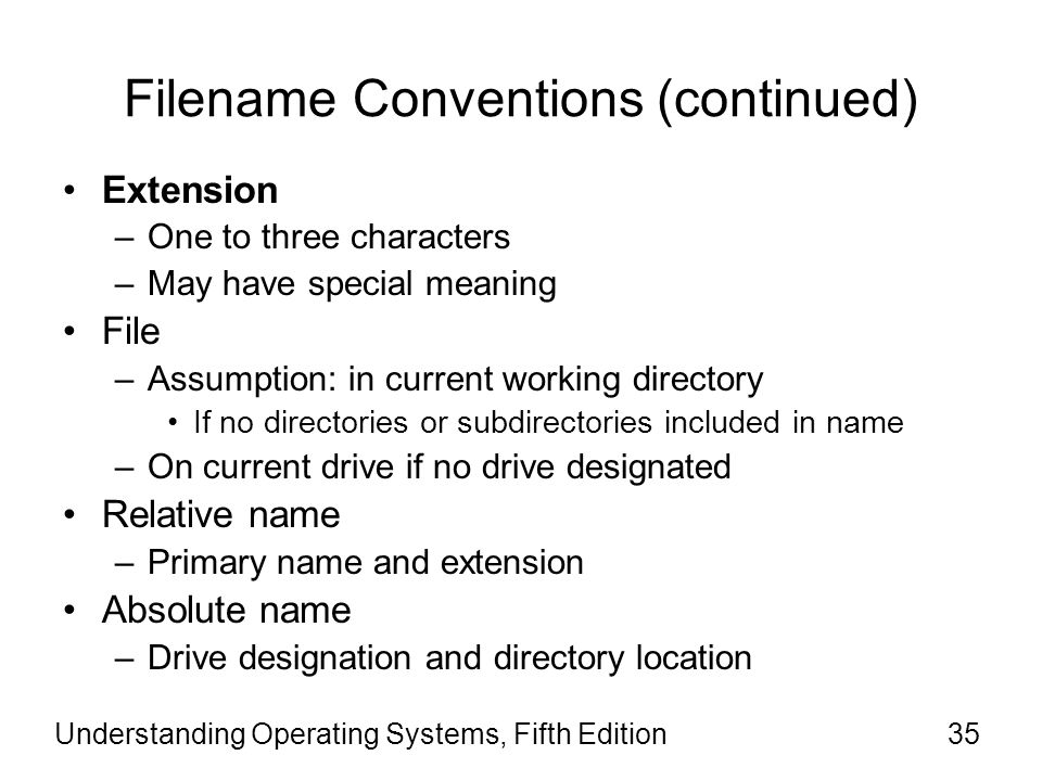Filename Conventions (continued)
