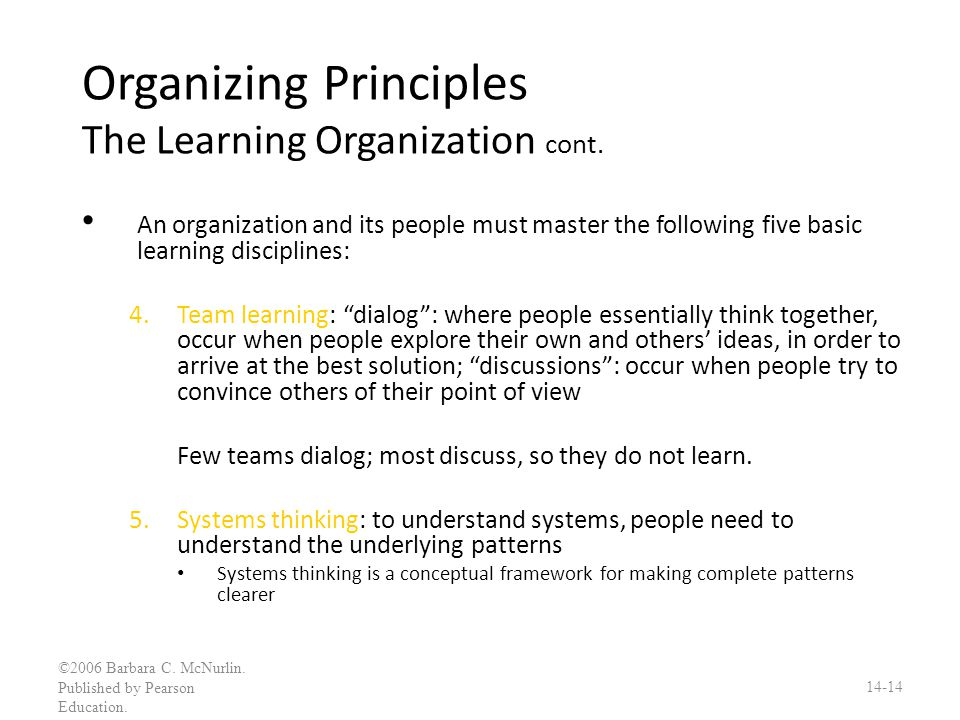 Organizing Principles The Learning Organization cont.