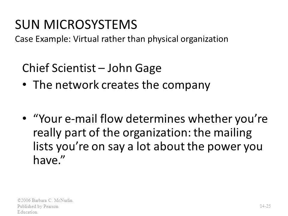 SUN MICROSYSTEMS Case Example: Virtual rather than physical organization