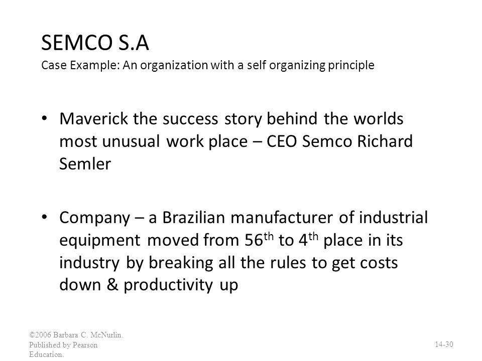 SEMCO S.A Case Example: An organization with a self organizing principle