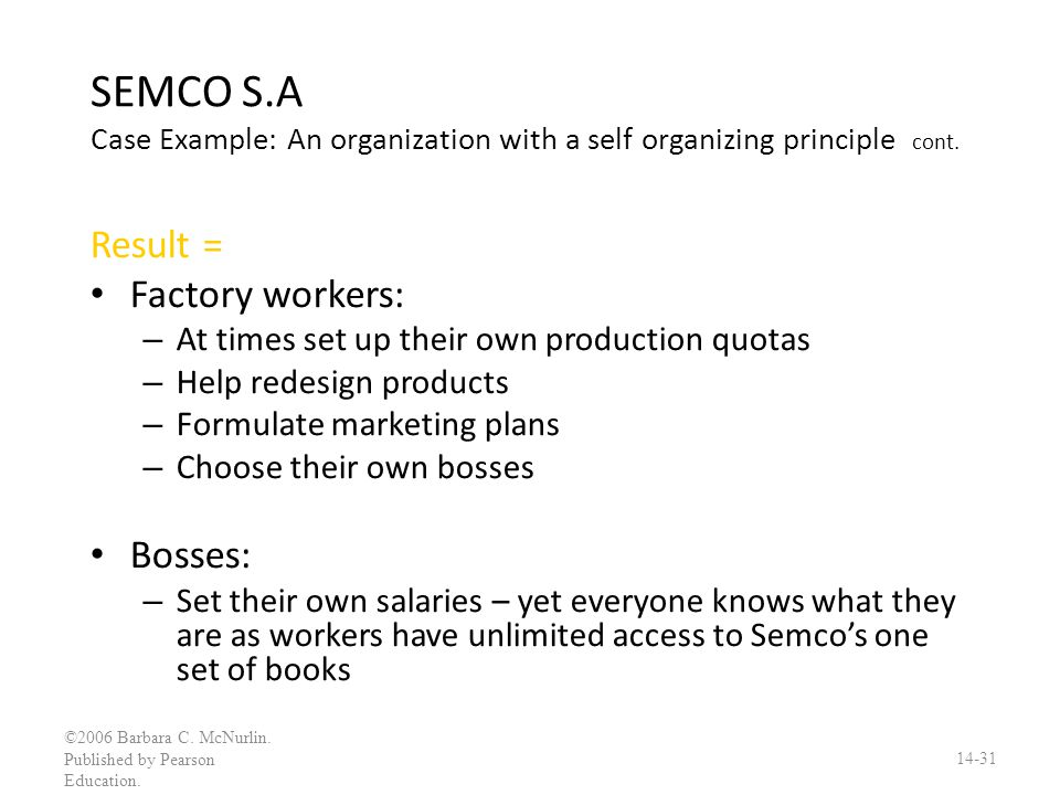 SEMCO S.A Case Example: An organization with a self organizing principle cont.