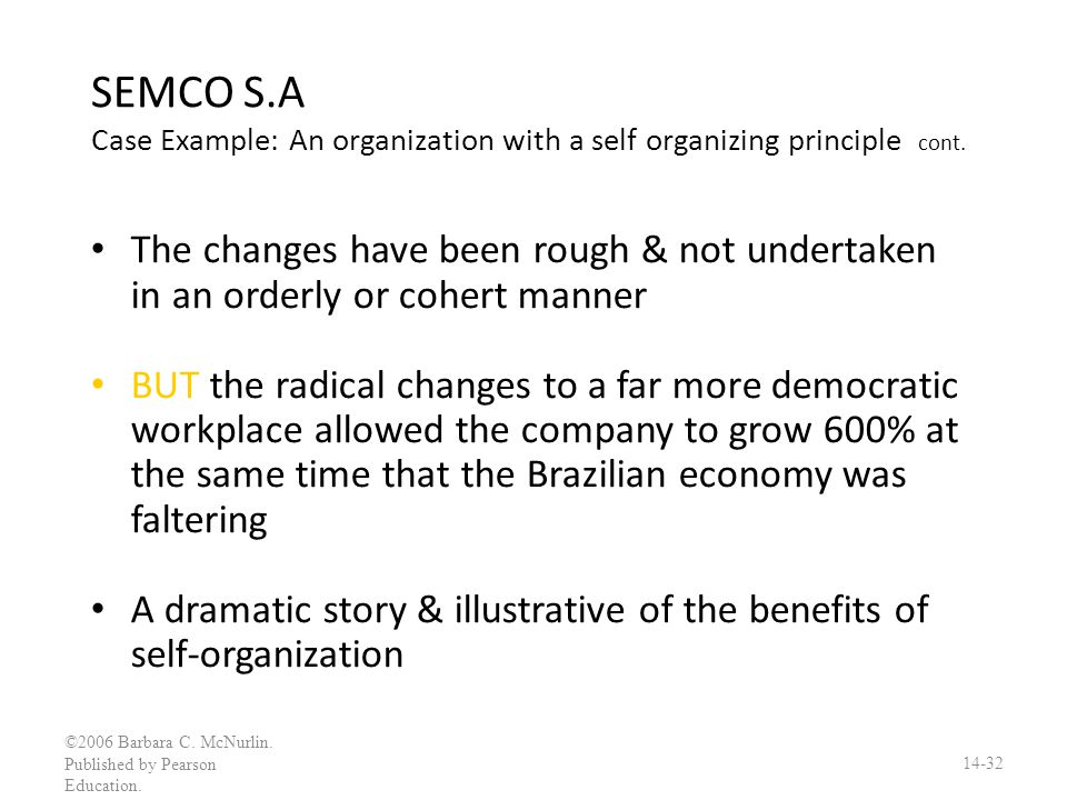 SEMCO S.A Case Example: An organization with a self organizing principle cont.