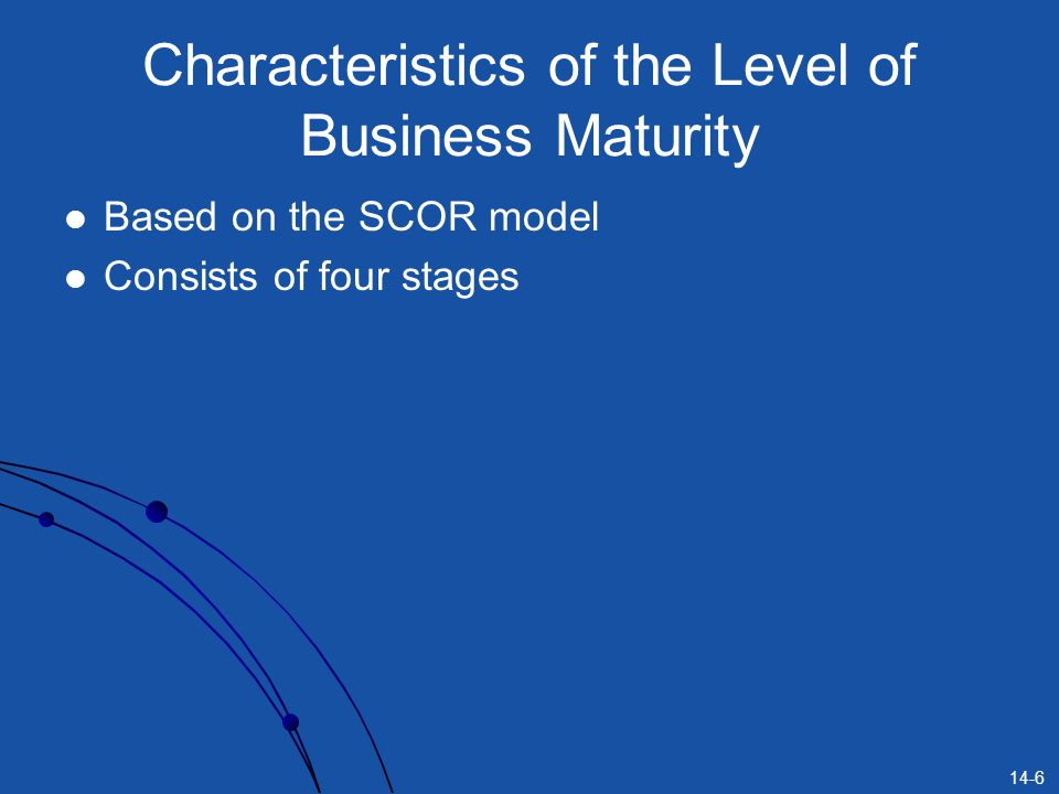 Characteristics of the Level of Business Maturity