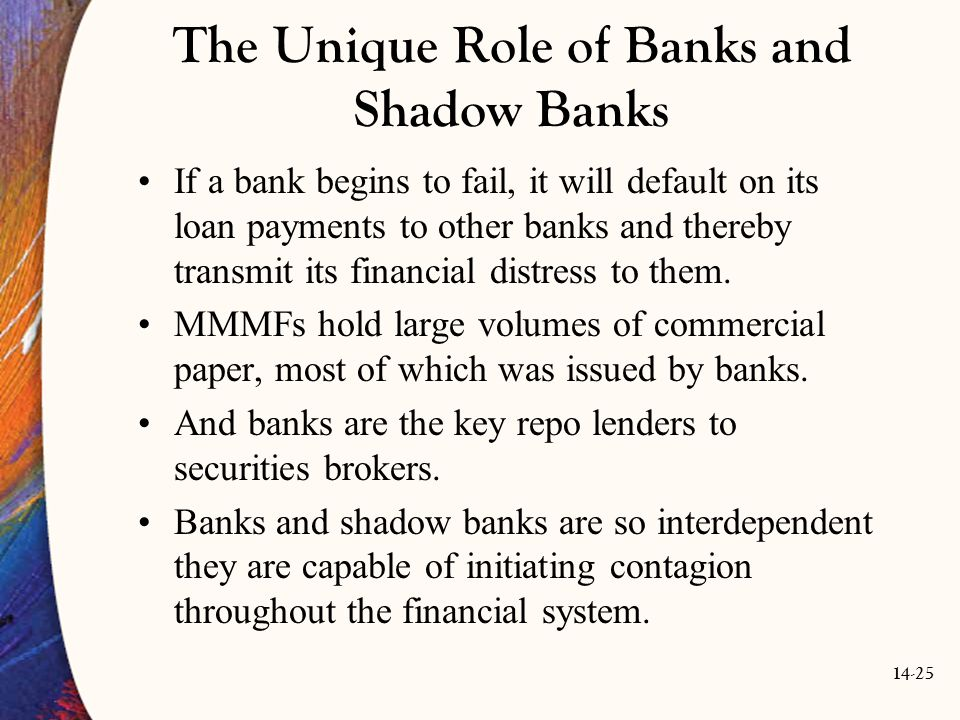 The Unique Role of Banks and Shadow Banks
