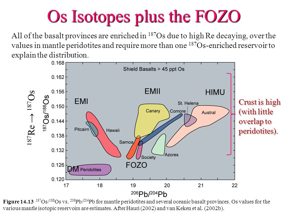 Os Isotopes plus the FOZO