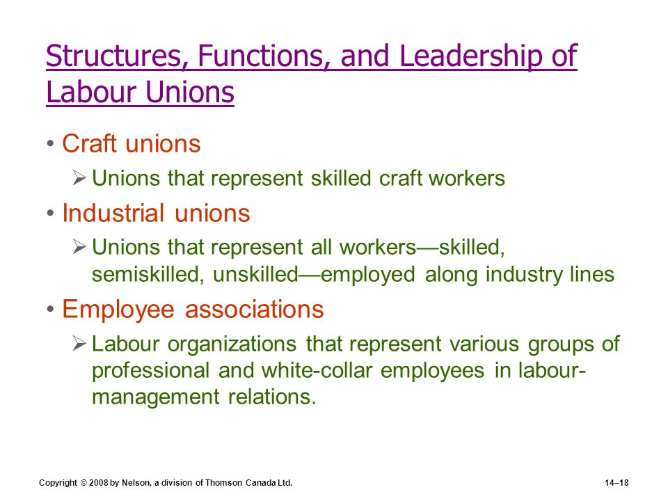 Structures, Functions, and Leadership of Labour Unions