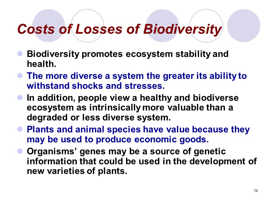 Costs of Losses of Biodiversity