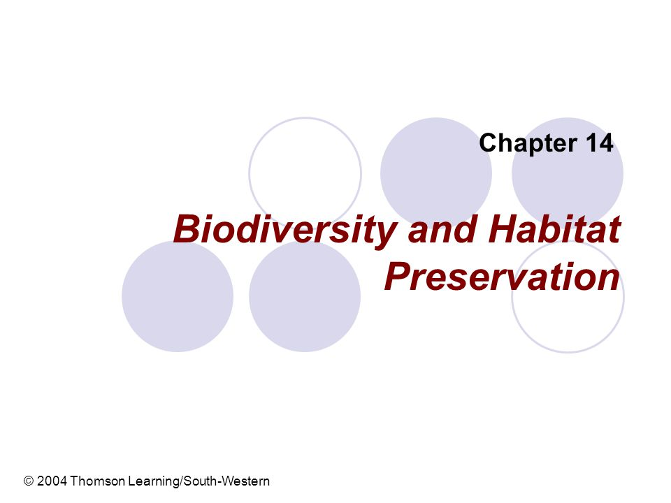 Biodiversity and Habitat Preservation