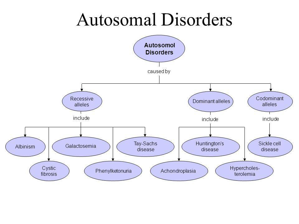 Autosomal Disorders Section 14-1 Autosomol Disorders caused by