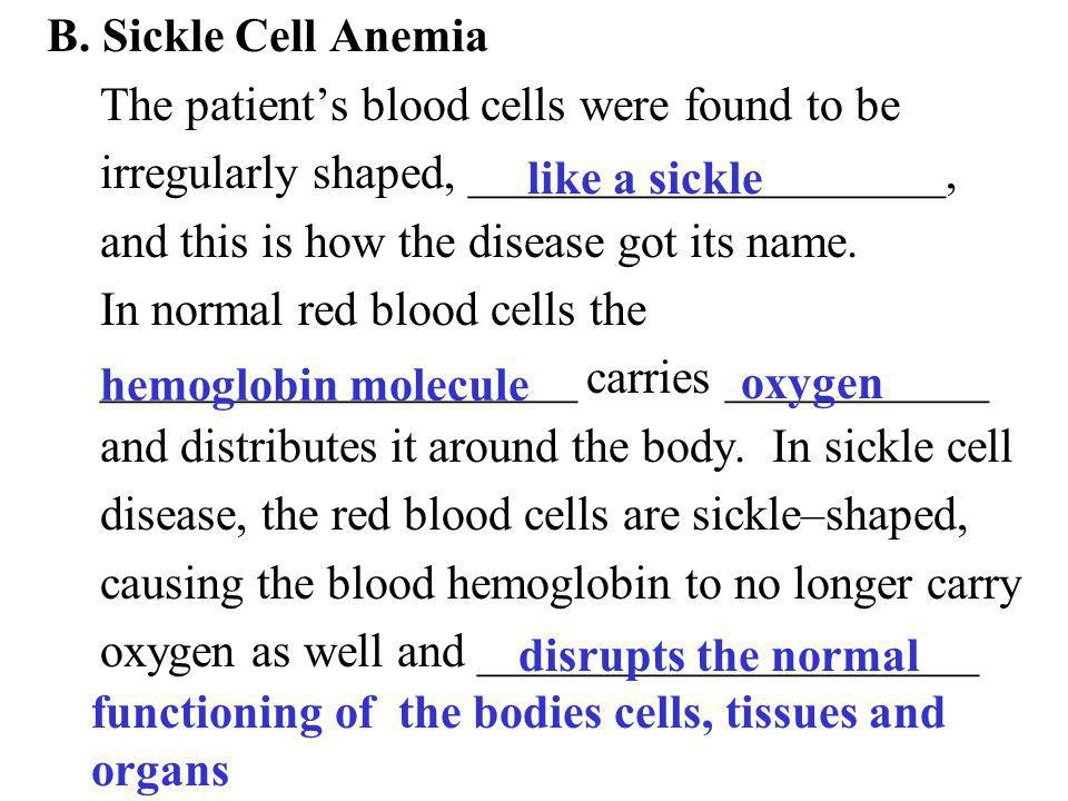 B. Sickle Cell Anemia The patient's blood cells were found to be. irregularly shaped, ____________________,