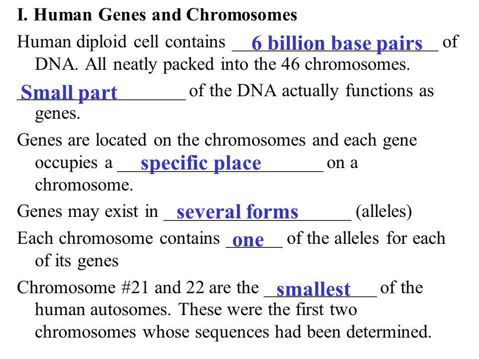 6 billion base pairs Small part specific place several forms one