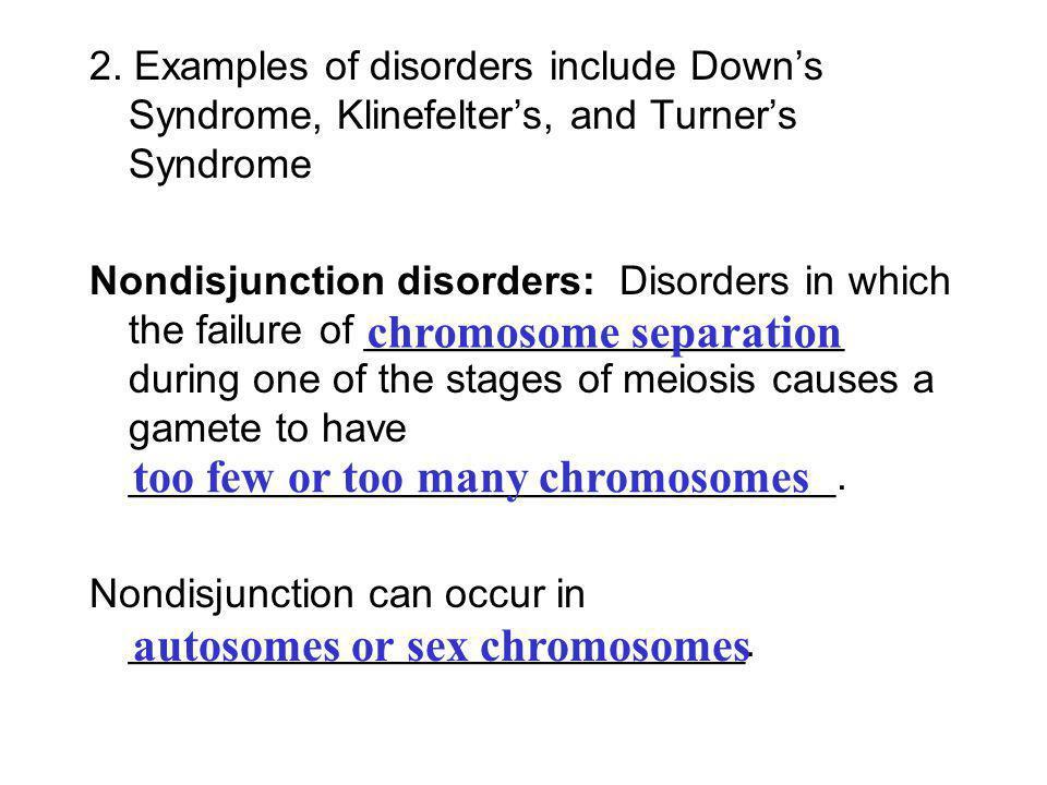 chromosome separation