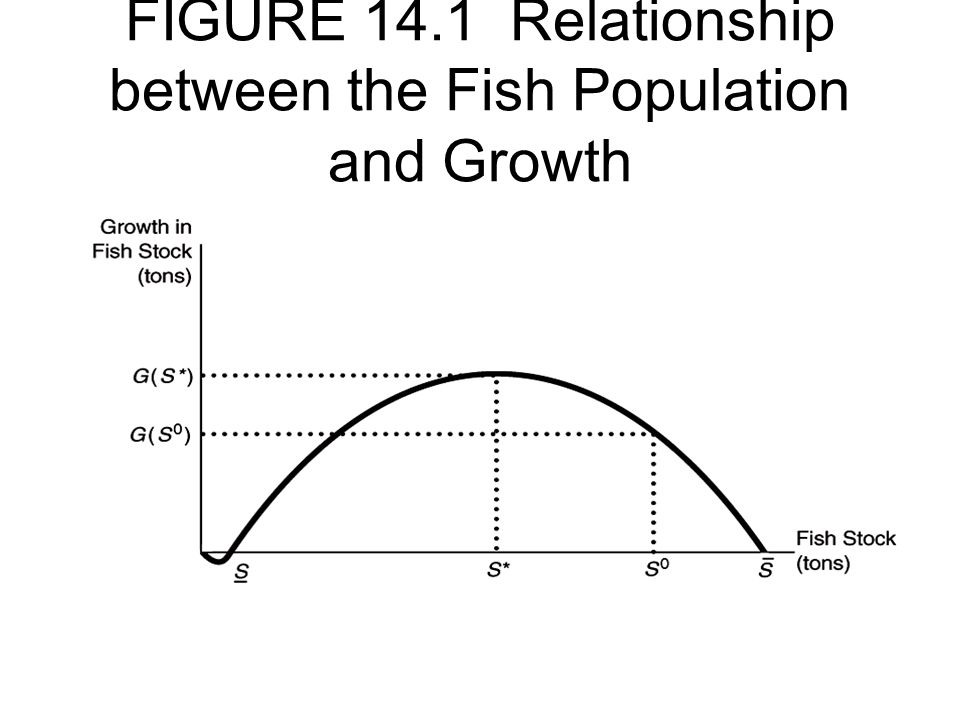 FIGURE 14.1 Relationship between the Fish Population and Growth