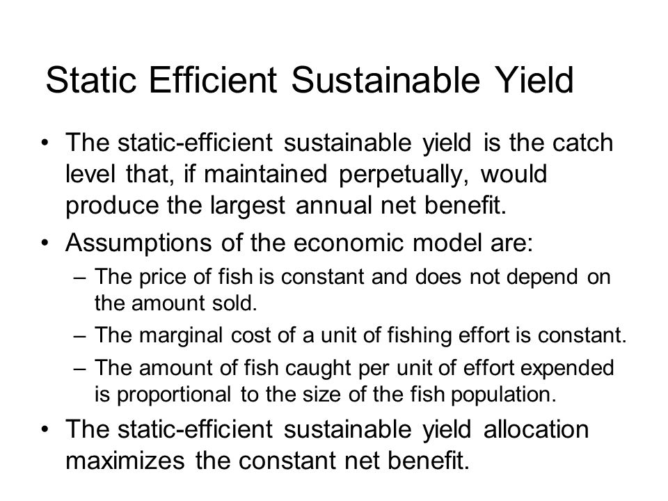Static Efficient Sustainable Yield