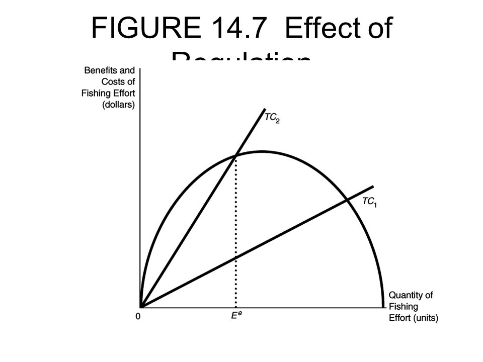 FIGURE 14.7 Effect of Regulation