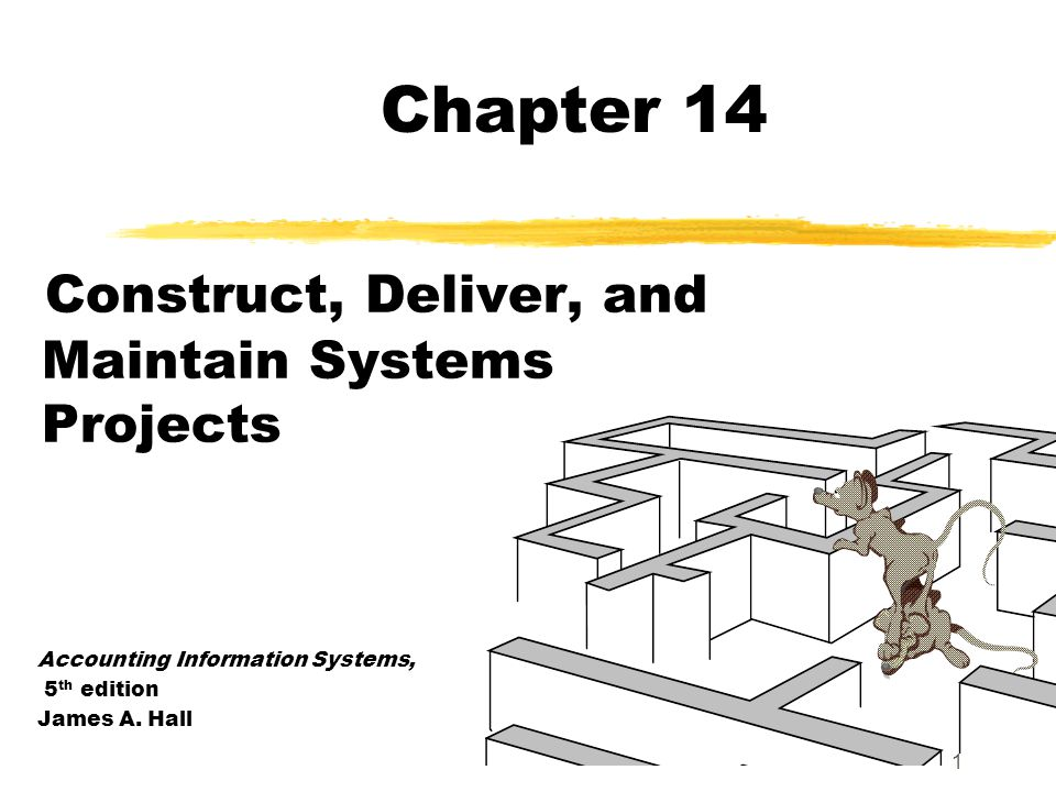 Construct, Deliver, and Maintain Systems Projects