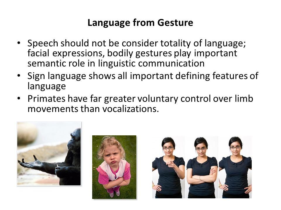 Language from Gesture