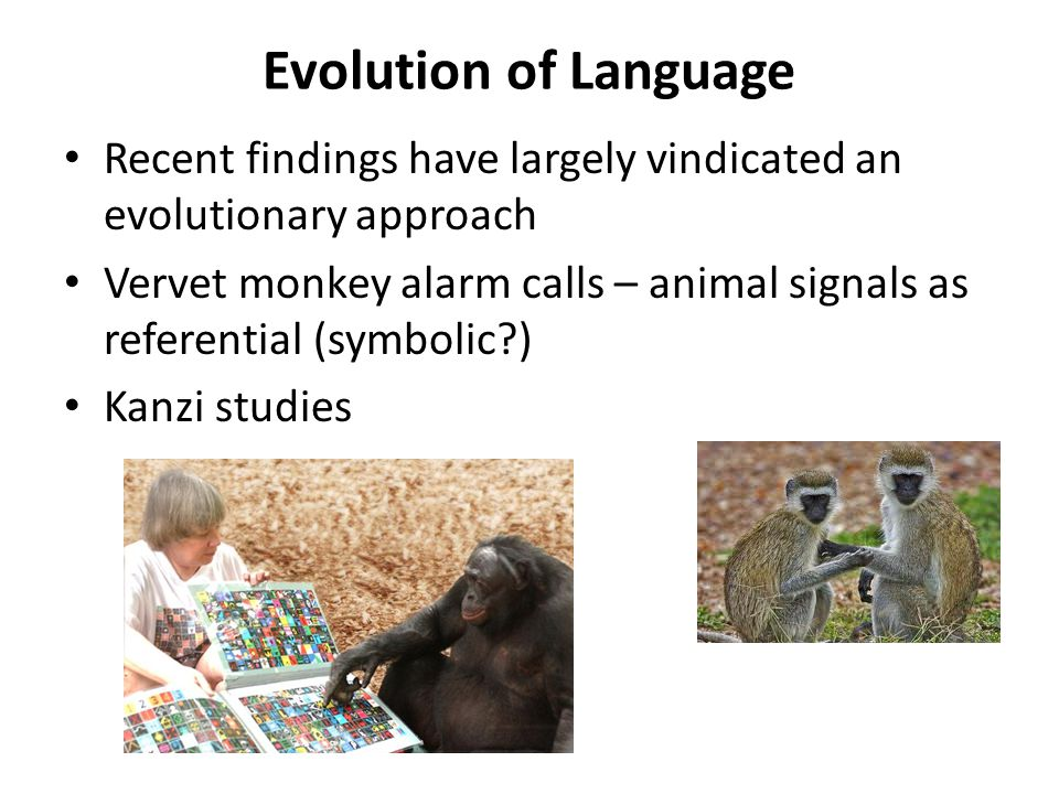 Evolution of Language Recent findings have largely vindicated an evolutionary approach.