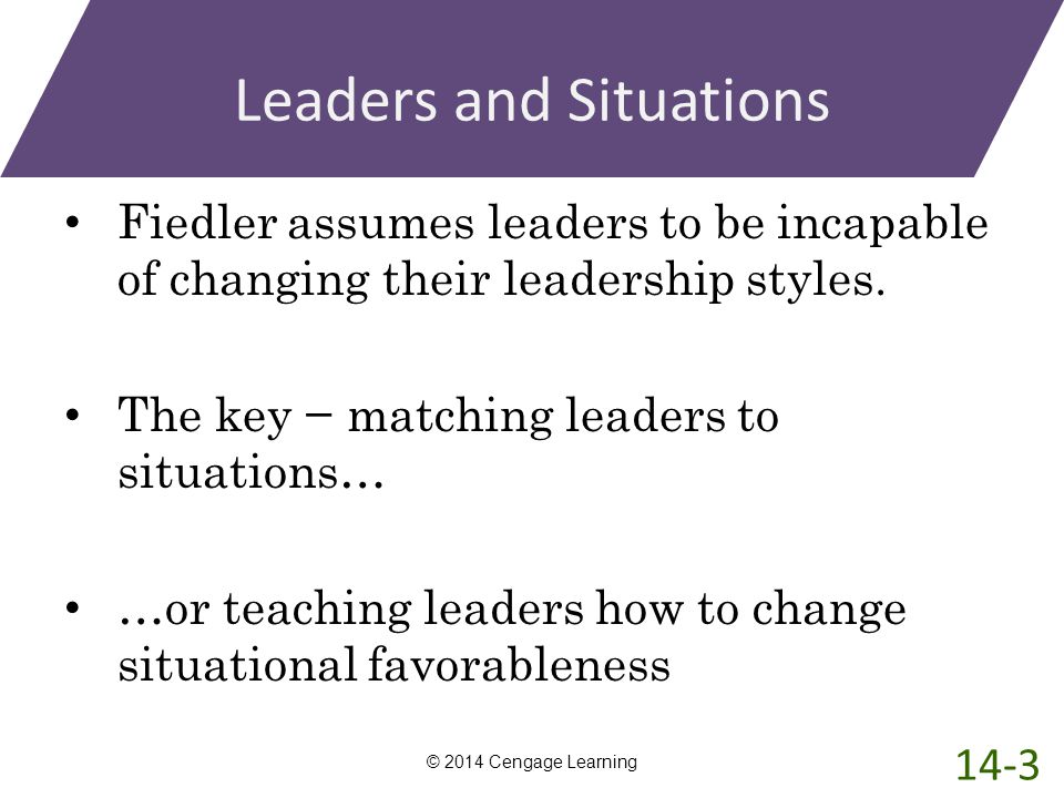 Leaders and Situations