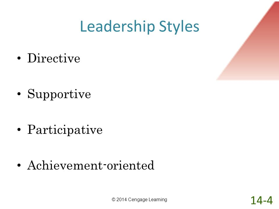 Leadership Styles Directive Supportive Participative