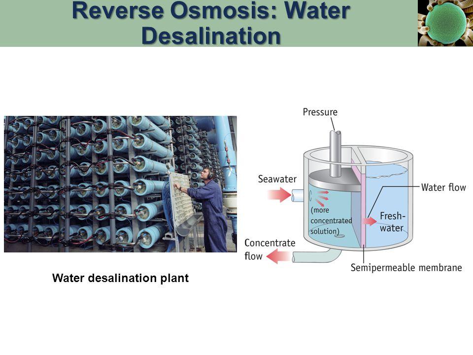 Reverse Osmosis: Water Desalination