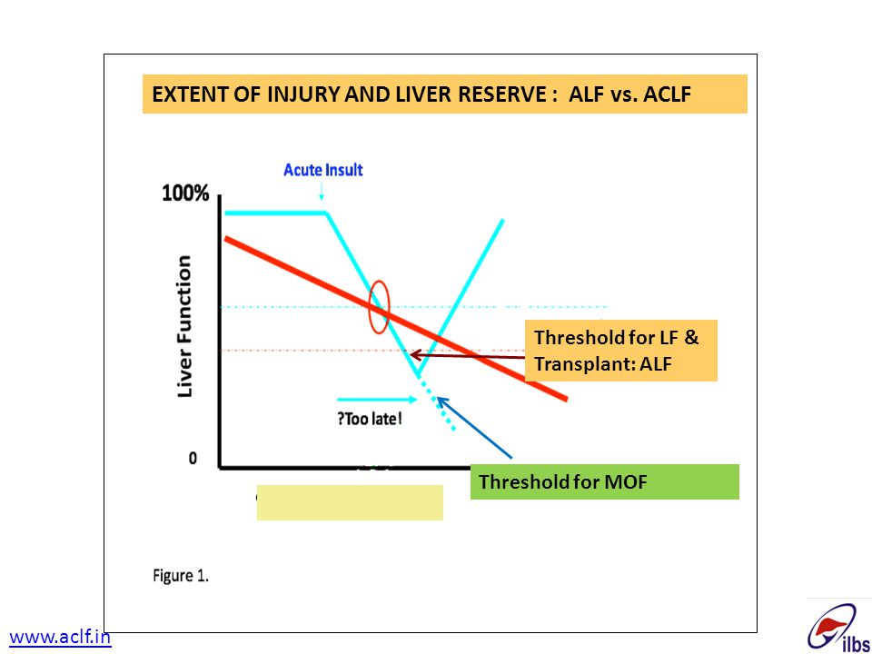 EXTENT OF INJURY AND LIVER RESERVE : ALF vs. ACLF