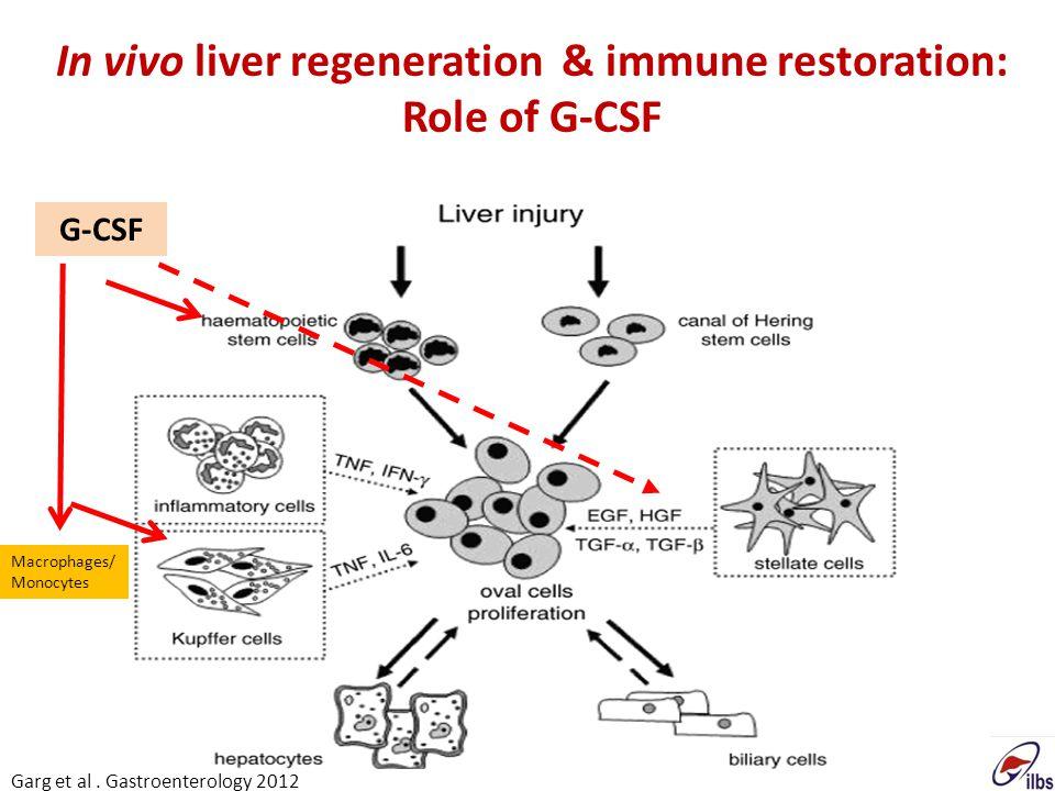 In vivo liver regeneration & immune restoration: Role of G-CSF