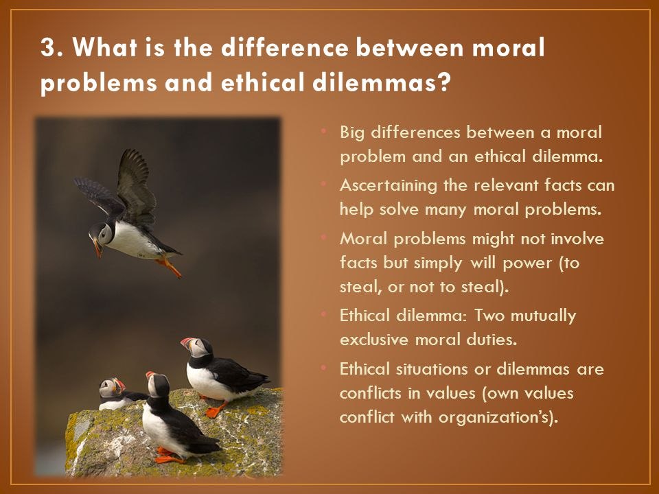 3. What is the difference between moral problems and ethical dilemmas