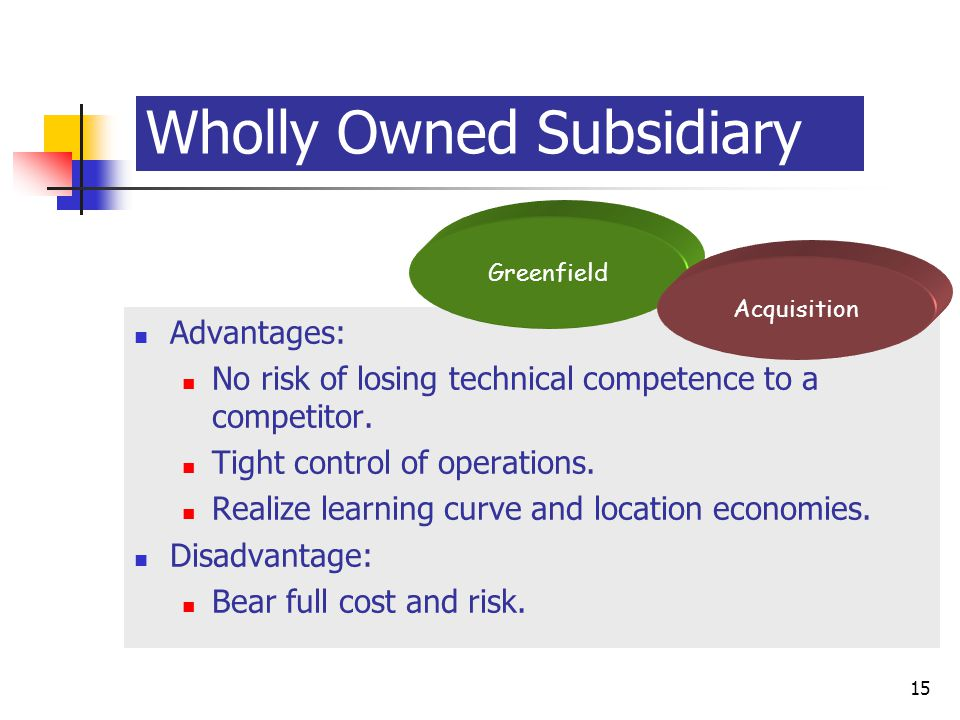 wholly owned subsidiary advantages disadvantages For any company contemplating expanding into a new market, the advantages and disadvantages of setting up a branch or foreign subsidiary will depend on the business opportunities, as well as the cultural and regulatory climate of the specific country.