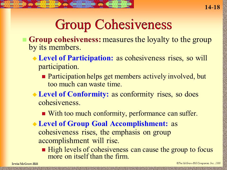 Group Cohesiveness Group cohesiveness: measures the loyalty to the group by its members.