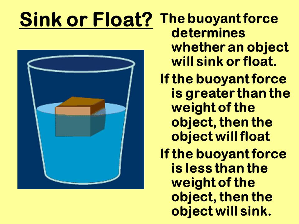 Sink or Float The buoyant force determines whether an object will sink or float.
