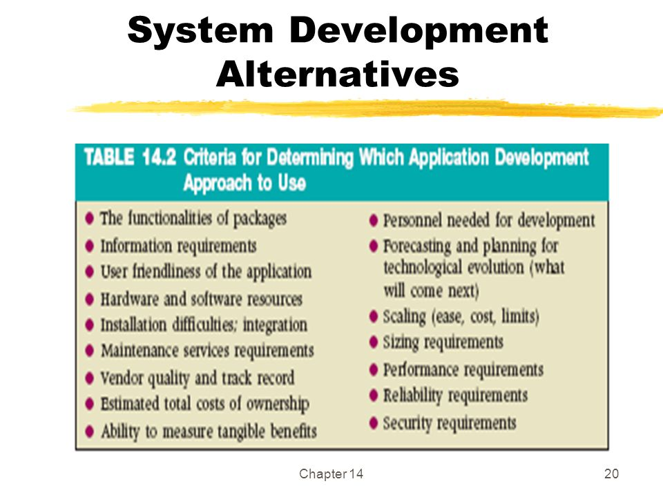 System Development Alternatives