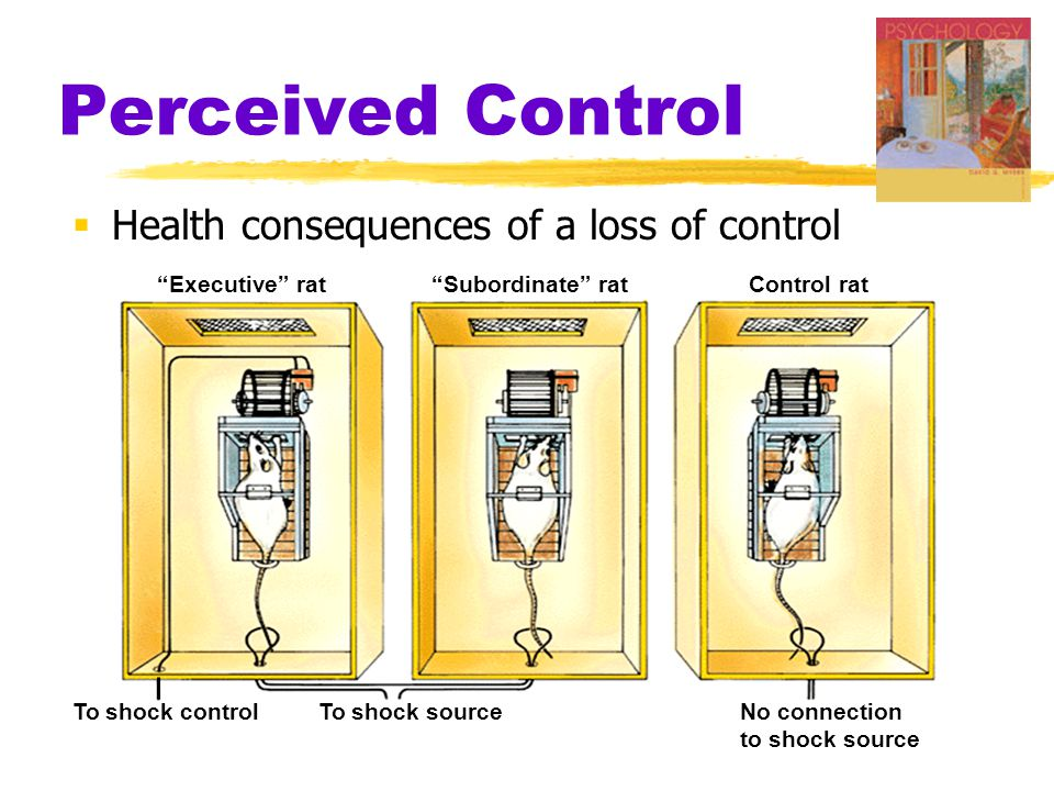 Perceived Control Health consequences of a loss of control