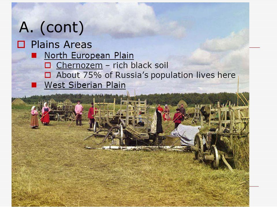 A. (cont) Plains Areas North European Plain West Siberian Plain