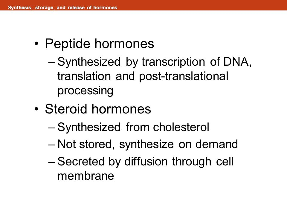 Synthesis, storage, and release of hormones