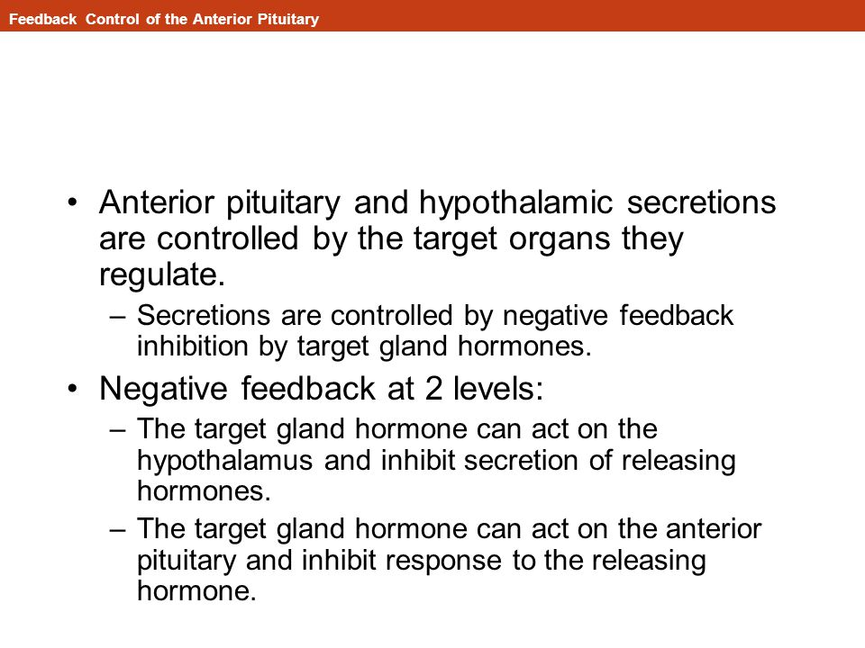 Feedback Control of the Anterior Pituitary