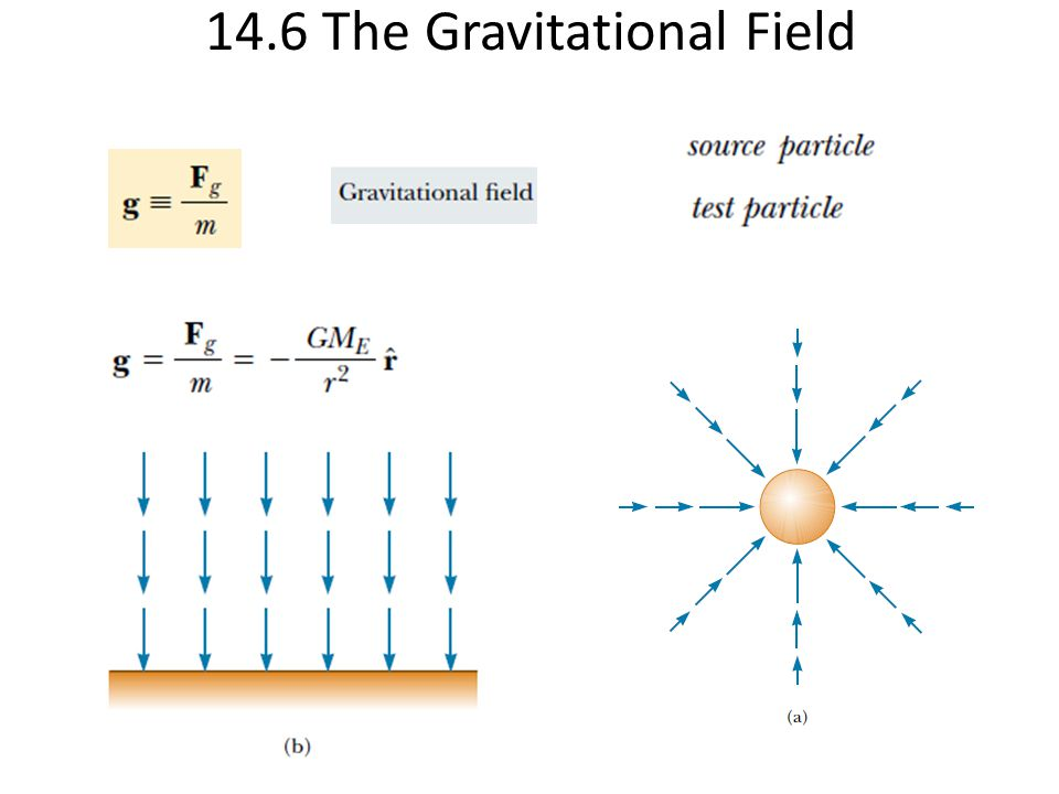 14.6 The Gravitational Field