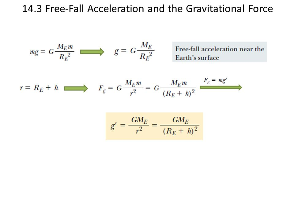 14.3 Free-Fall Acceleration and the Gravitational Force