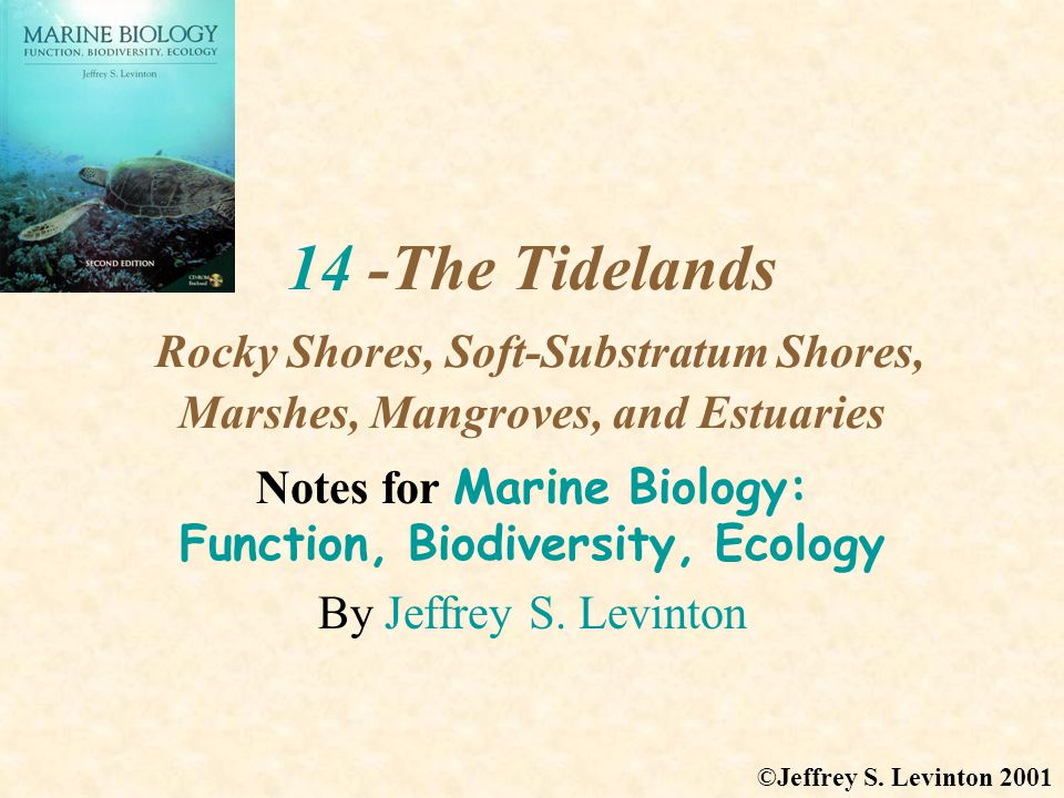 Notes for Marine Biology: Function, Biodiversity, Ecology
