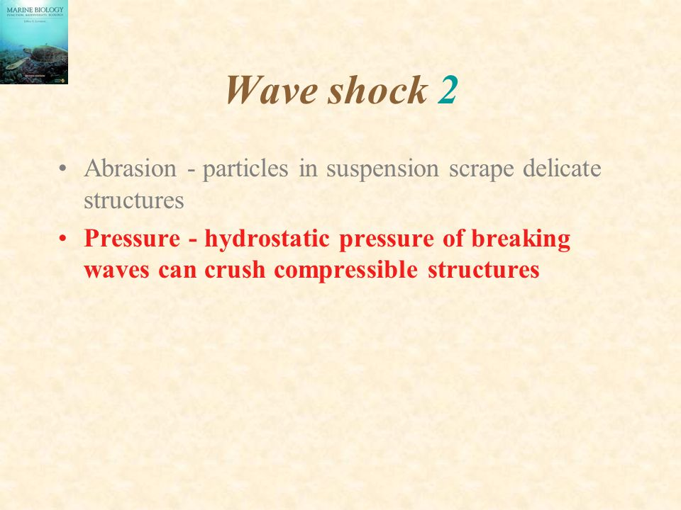 Wave shock 2 Abrasion - particles in suspension scrape delicate structures.