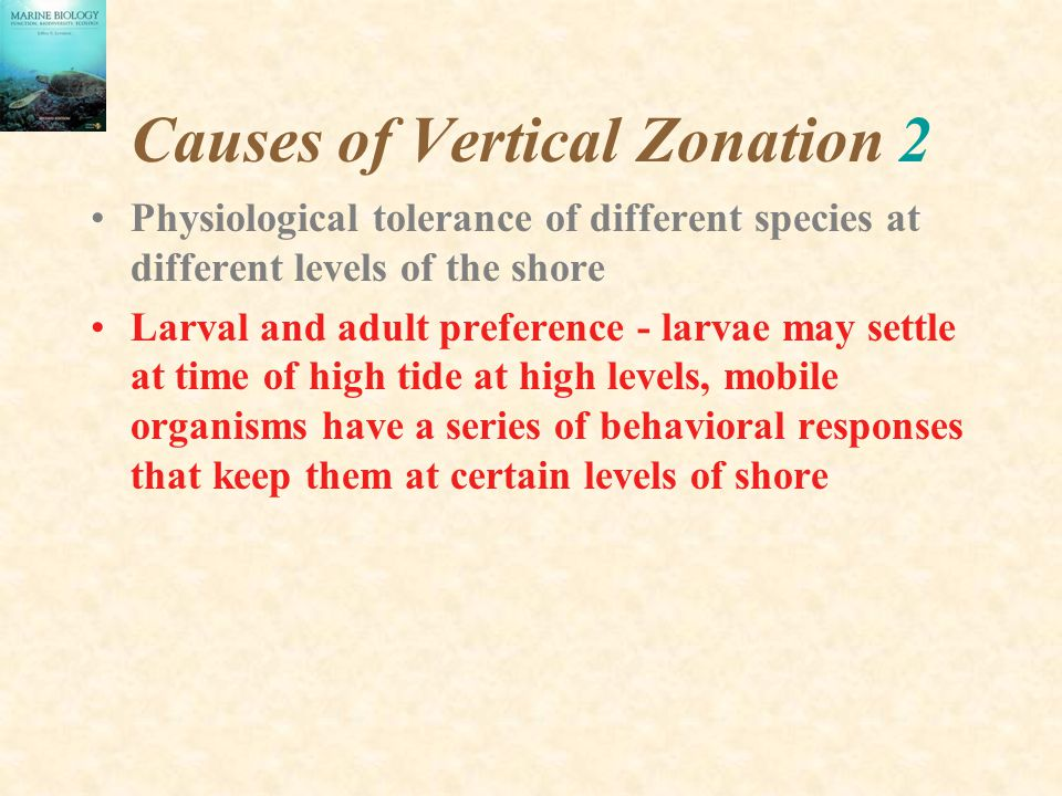 Causes of Vertical Zonation 2